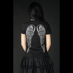 Camiseta wings